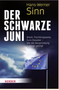 schwarzer_juni_Cover