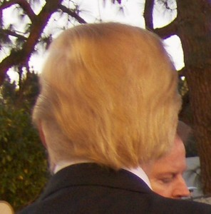Donald_Trump's_hair_from_behind,_2007