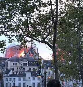 Notre_Dame_fire_April_2019_-_Roof_on_fire